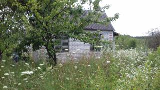 Sell the cottage in S. Dubovets